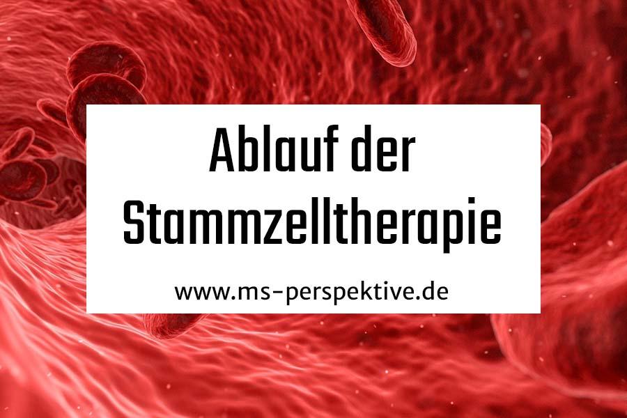 Coverbild zum Interview mit Prof. Christoph Heesen zur Stammzelltherapie